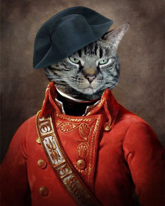 Eldar Zakirov, Tabby Cat in Red Uniform
