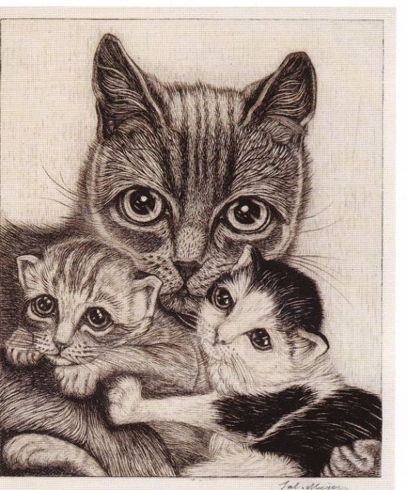 Cat with Two Kittens, Sal Meijer