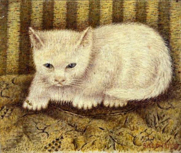 Sal Meijer, White Cat