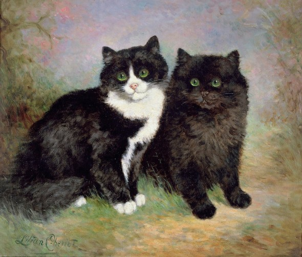 A Pair of Pussy Cats, Lilian Cheviot