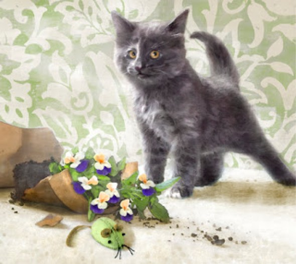 Dianne Woods, Kitten and Flowers