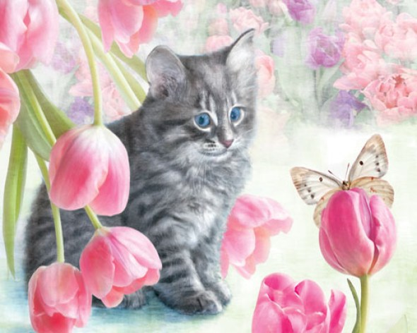 Dianne Woods, Tabby with Tulips