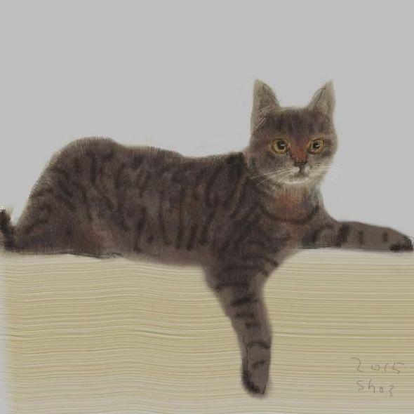 Shozo Ozaki, Cat Lounging
