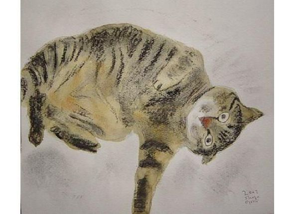 Shozo Ozaki, Cat on its Back