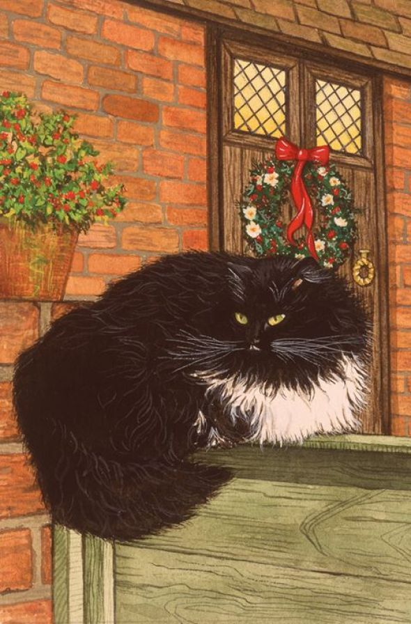 Tuxedo Cat waiting for Christmas, Pamela Blanchfield