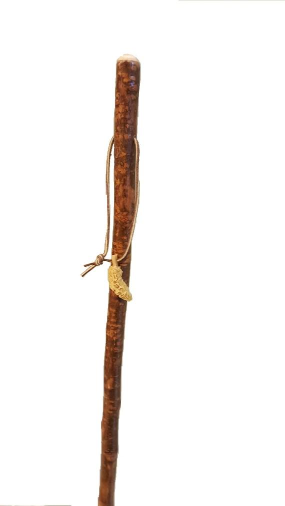 Hiking Stick