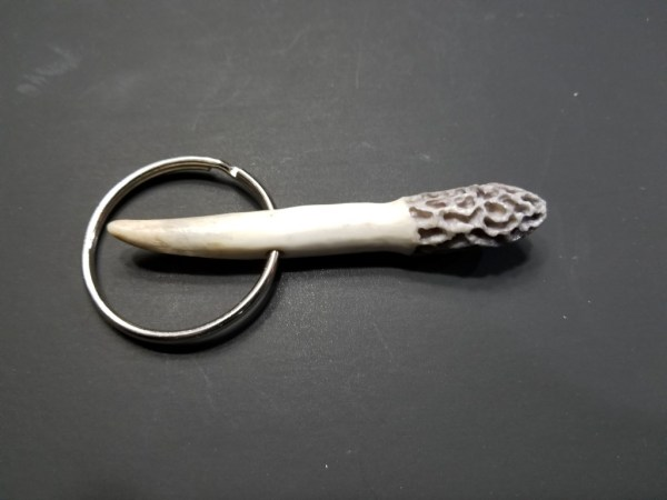 Morel Key Chain - Grey With Tip