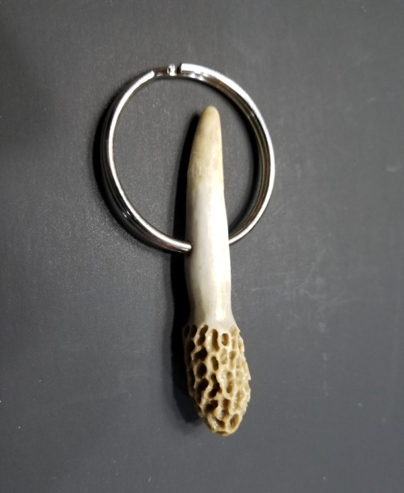 Morel Key Chain - Yellow With Tip