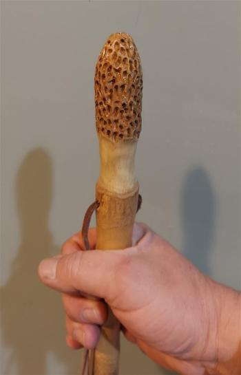 Hickory Hiking Stick