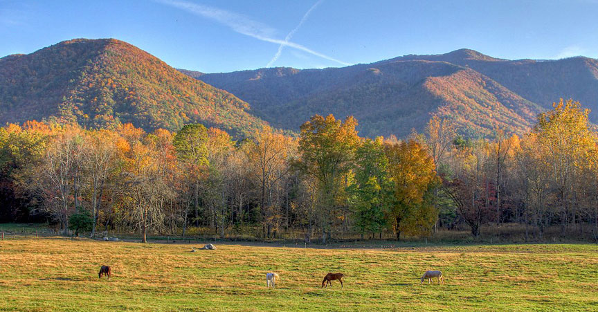 Free Fall Foliage Wallpaper Prescribed Burns Planned In The Smoky Mountains