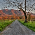 Great smoky mountains this spring 9 explore cades cove on a bicycle