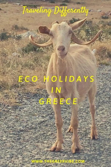 Traveling Differently: 5 Ecotourism Resorts in Greece
