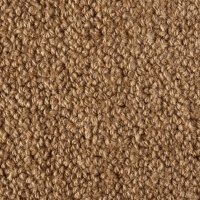 Earth Weave Carpet - Carpet Vidalondon