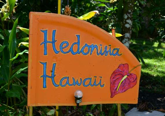 01_Hedonisia-Hawaii_eco-hostel