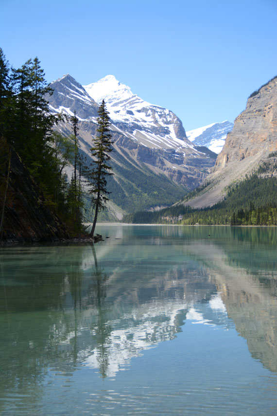 Canada_Bristish-Columbia_Mount-Robson-Park_Kinney-lake_10