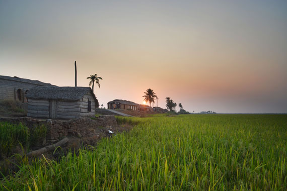 11-Sunset_Kerala-Blog-Express_Backwaters-Alappuzha_Houseboats-Lakes-and-Lagoons