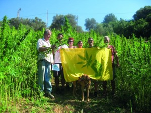 Hemp, The Myth and Now - The Green Greeks