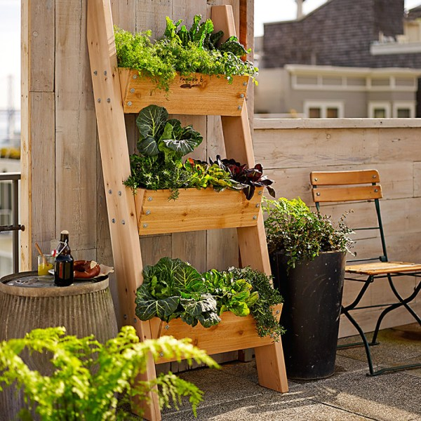 Vertical Wall Vegetable Garden Ideas