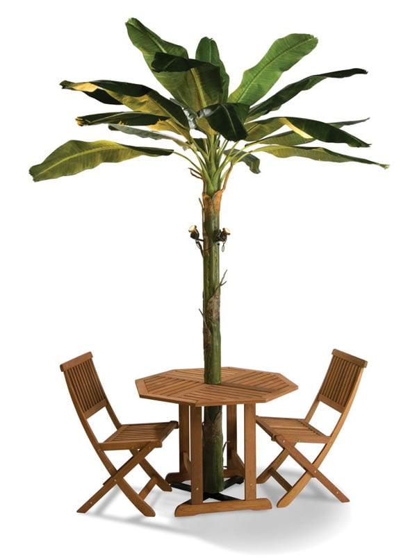 Banana Leaf Patio Umbrella Tree  The Green Head
