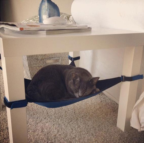 under chair cat hammock outdoor sling chairs crib for