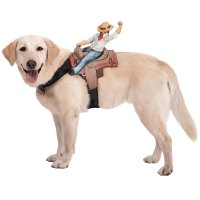 Dog Riders Pet Costumes - The Green Head