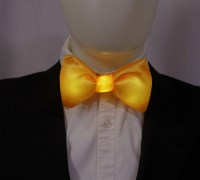 Glowing Bow Ties and Pocket Squares - The Green Head