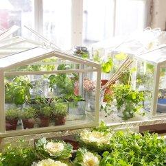 Greenhouse Kitchen Window Products Ikea Socker Indoor Miniature The Green Head