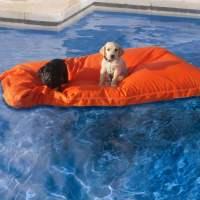 Kai Pet Pool Floats - The Green Head