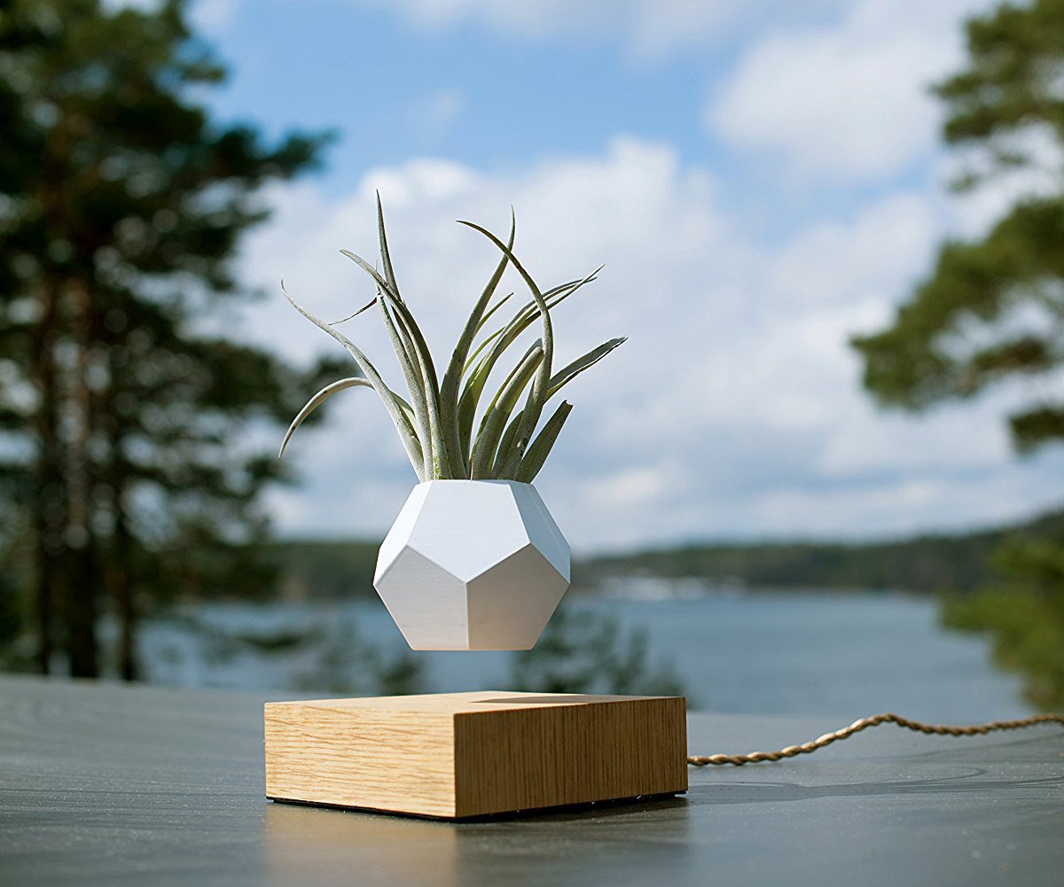 Lyfe ZeroGravity Planter  Levitates Plants in MidAir