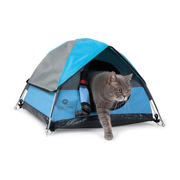 Miniature Tents Cats