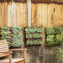 Outdoor Living Wall Planters - Green Head