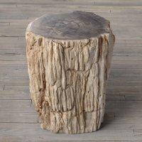 Petrified Wood Stump End Table - The Green Head