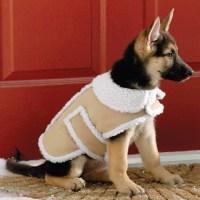 Shearling Fleece Winter Dog Coat | The Green Head