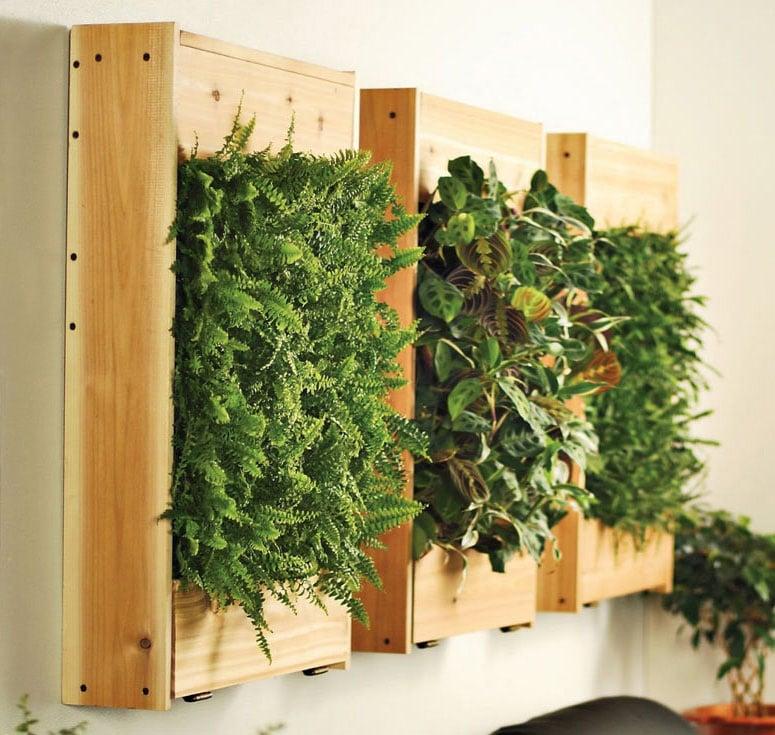 Indoor Living Wall Planters