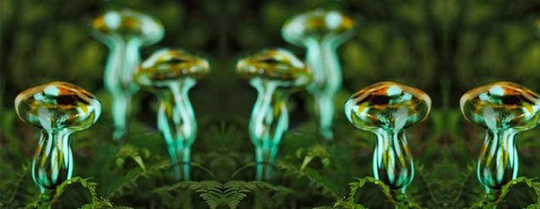 Moonlight Mushrooms  GlowintheDark Watering Spikes