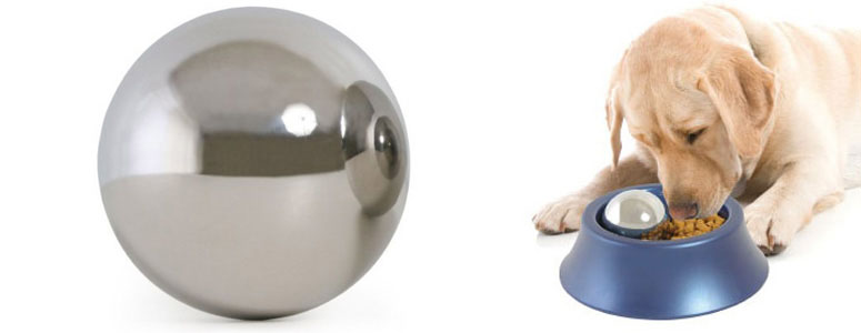 Remote Control Ball Dog Toy