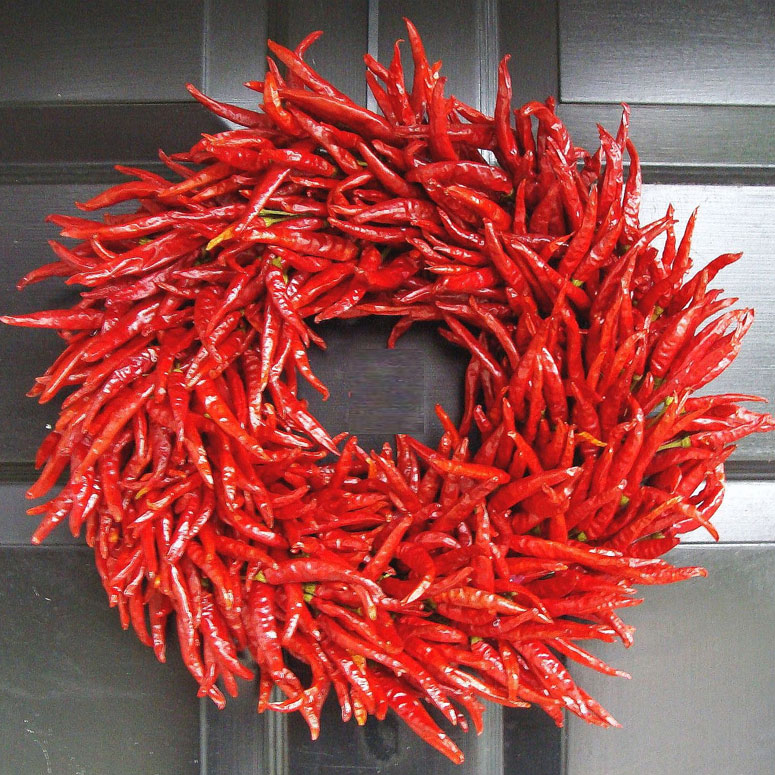 Organic Red Chili Pepper Wreath  The Green Head
