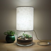 Terrarium / Display Table Lamp - The Green Head