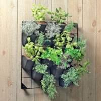 Vertical Wall Garden - The Green Head