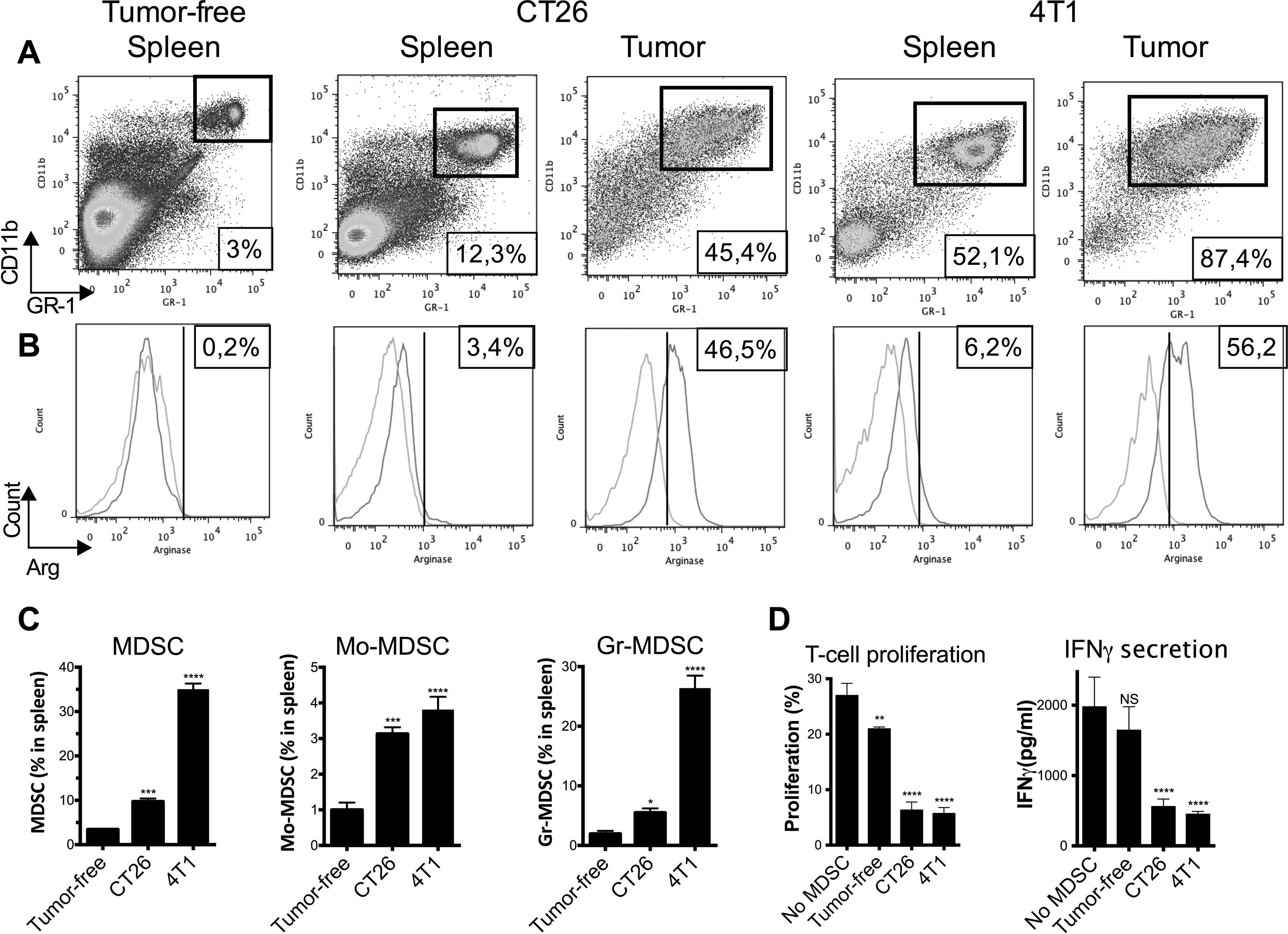 Myeloid Derived Suppressor Cells Reveal Radioprotective