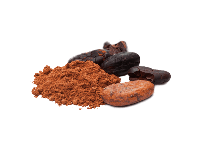 The Green Labs LLC  – Bulk Raw Material Supplier of Organic