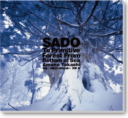 SADO - To Primitive Forest from Bottom of Sea ENGLISH Version - book by Takashi