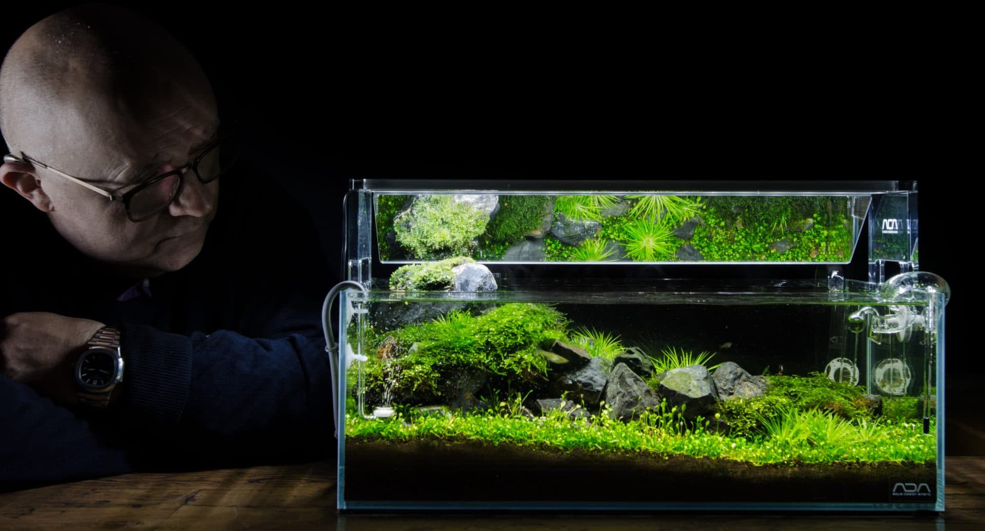 The Green Machine aquascaping shop, aquarium plants ...