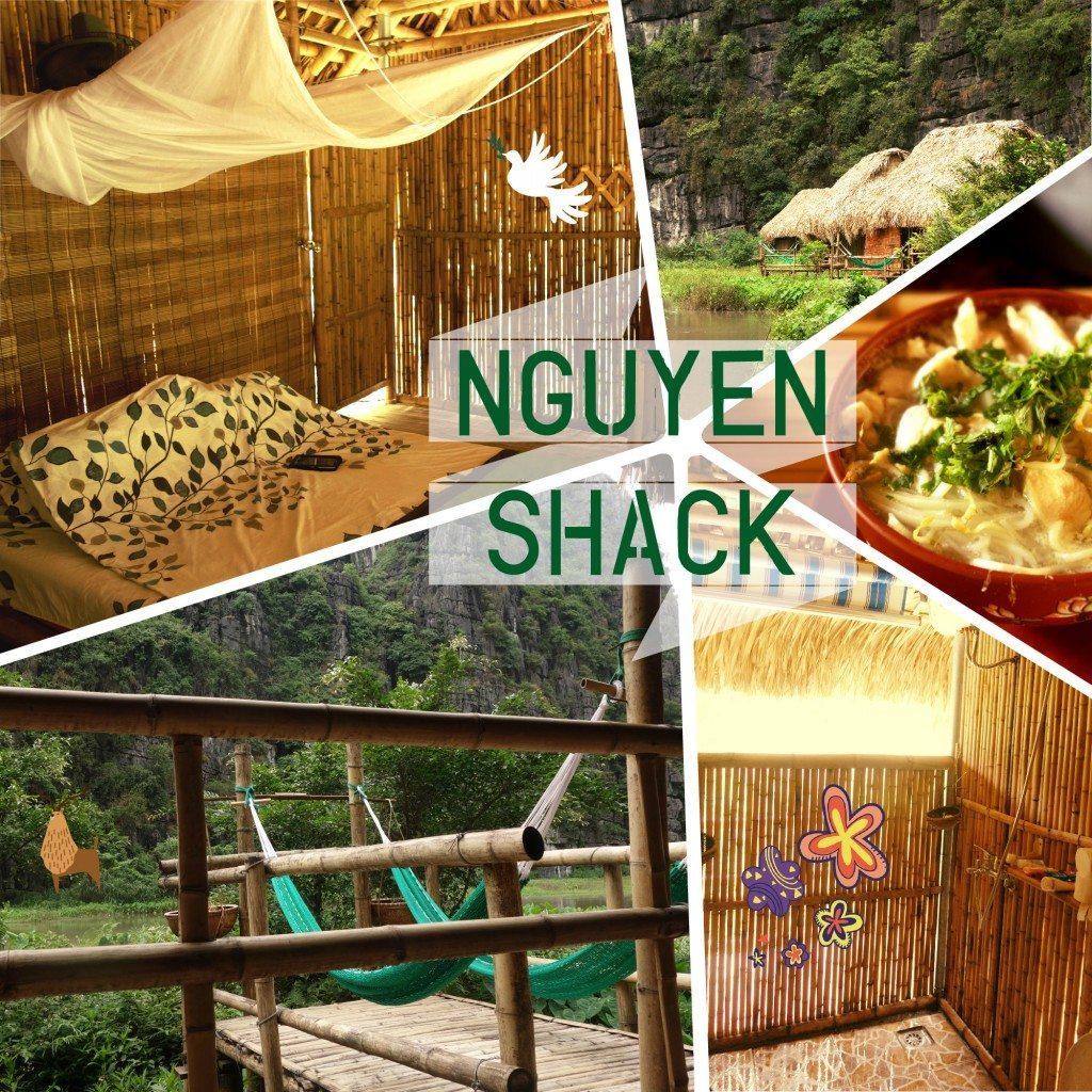 nguyen shack vietnam ninh binh