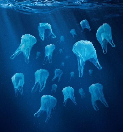 sacs plastique oceans plus de poissons