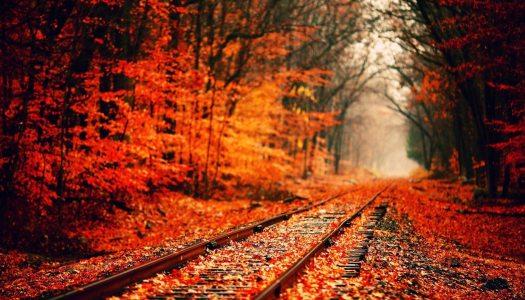 Vacances en automne? Top des destinations «vertes» de Septembre à Novembre