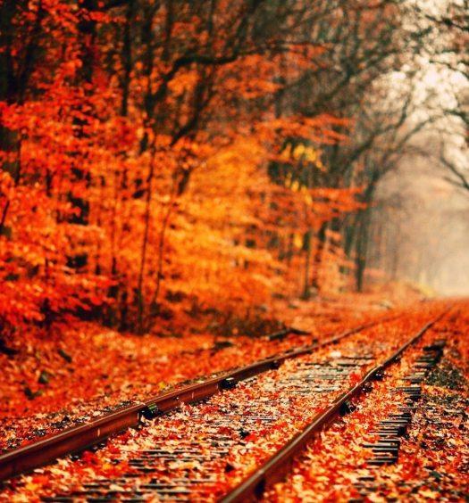 Vacances en automne? Top des destinations « vertes » de Septembre Octobre Novembre où partir en Automne