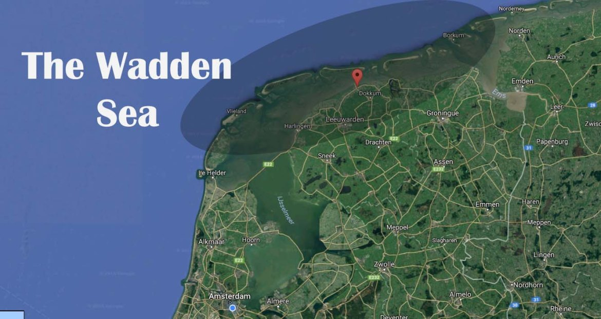 the wadden sea in the netherlands mudflat hiking