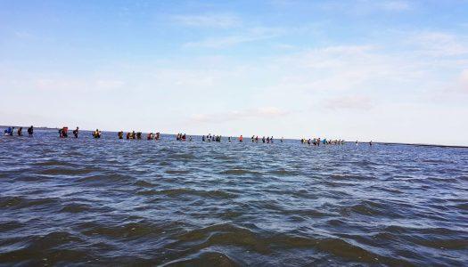 Que Faire aux Pays-Bas : Traverser une mer…à pied!