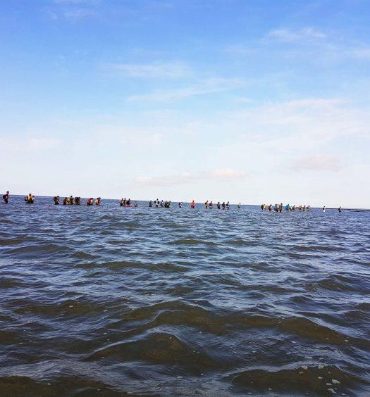wadlopen marche dans la boue pays-bas hollande que faire aux pays-bas
